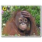 Коврик Орангутанги